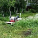 Maskinförarkort för röjsåg, grästrimmer & motorsåg